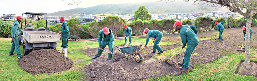 Garden Master Garden Landscaping Garden Maintenance